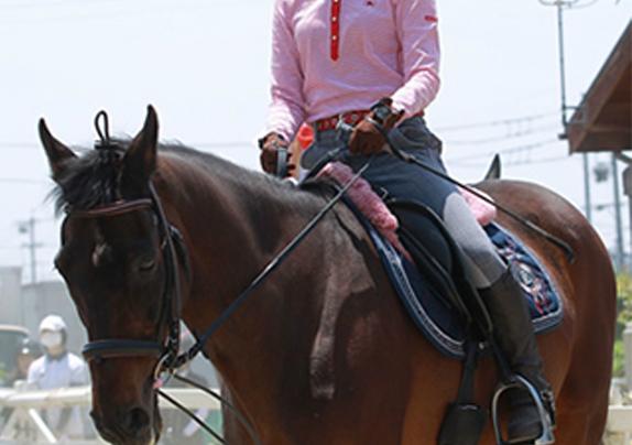 乗馬体験 4回体験