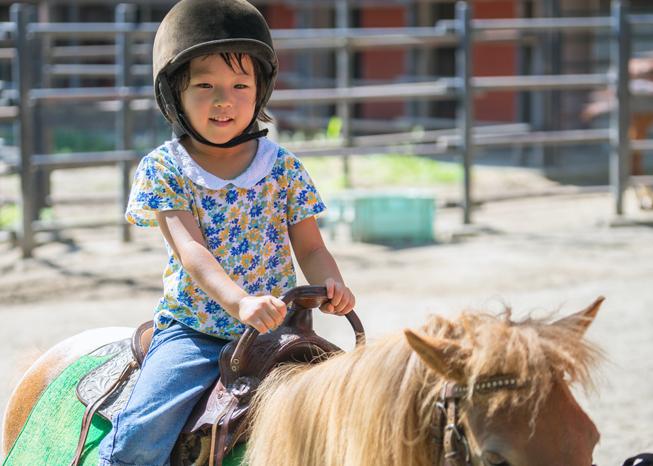 初心者さんから上級者まで学べる乗馬クラブです!